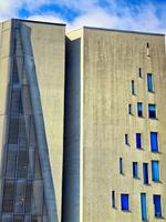 The windows tell 2
