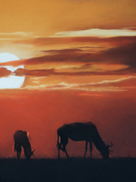 Sunset Over the Mara