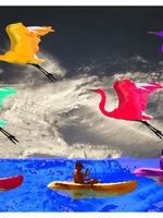 Canoes And Birds