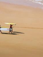 Surf's Up I
