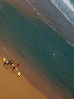 Surf's Up II