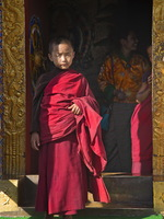 Monk in Waiting