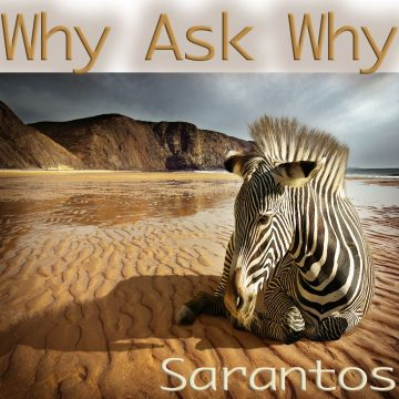 Why Ask Why