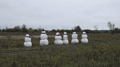 SAVE OUR SNOWMEN - Shawn Zeytinoglu