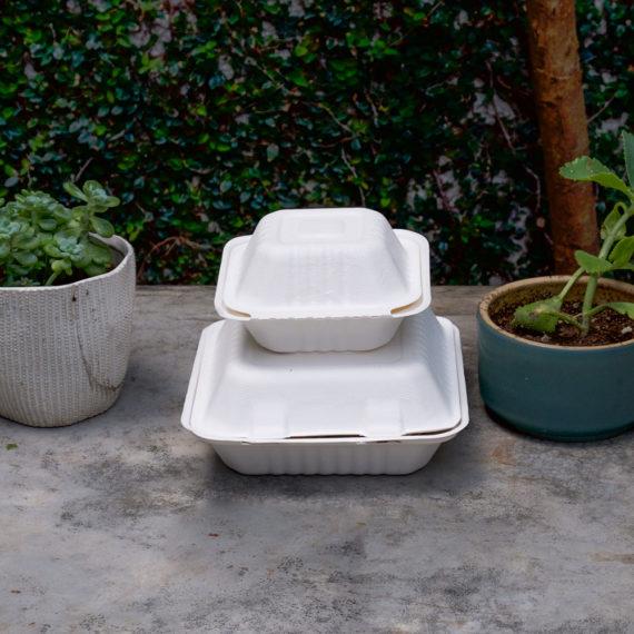 Contenedores-de-Alimentos-Biodegradables-de-6x6-y-8x8