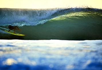 Mitch Coleborn Desert Point Indonesia Santa Cruz Waves