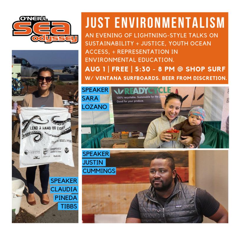 Just Environmentalism (3)