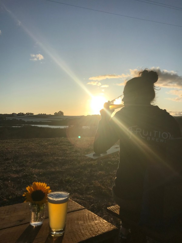 Sunset Sunflower - Credit_ Fruition Brewing