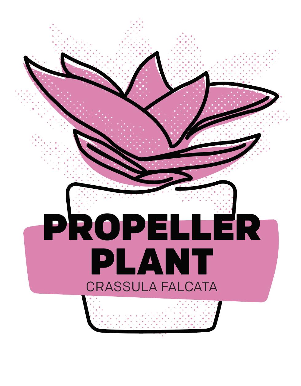 Propeller Plant