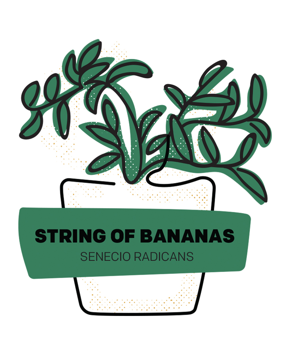 String of Bananas