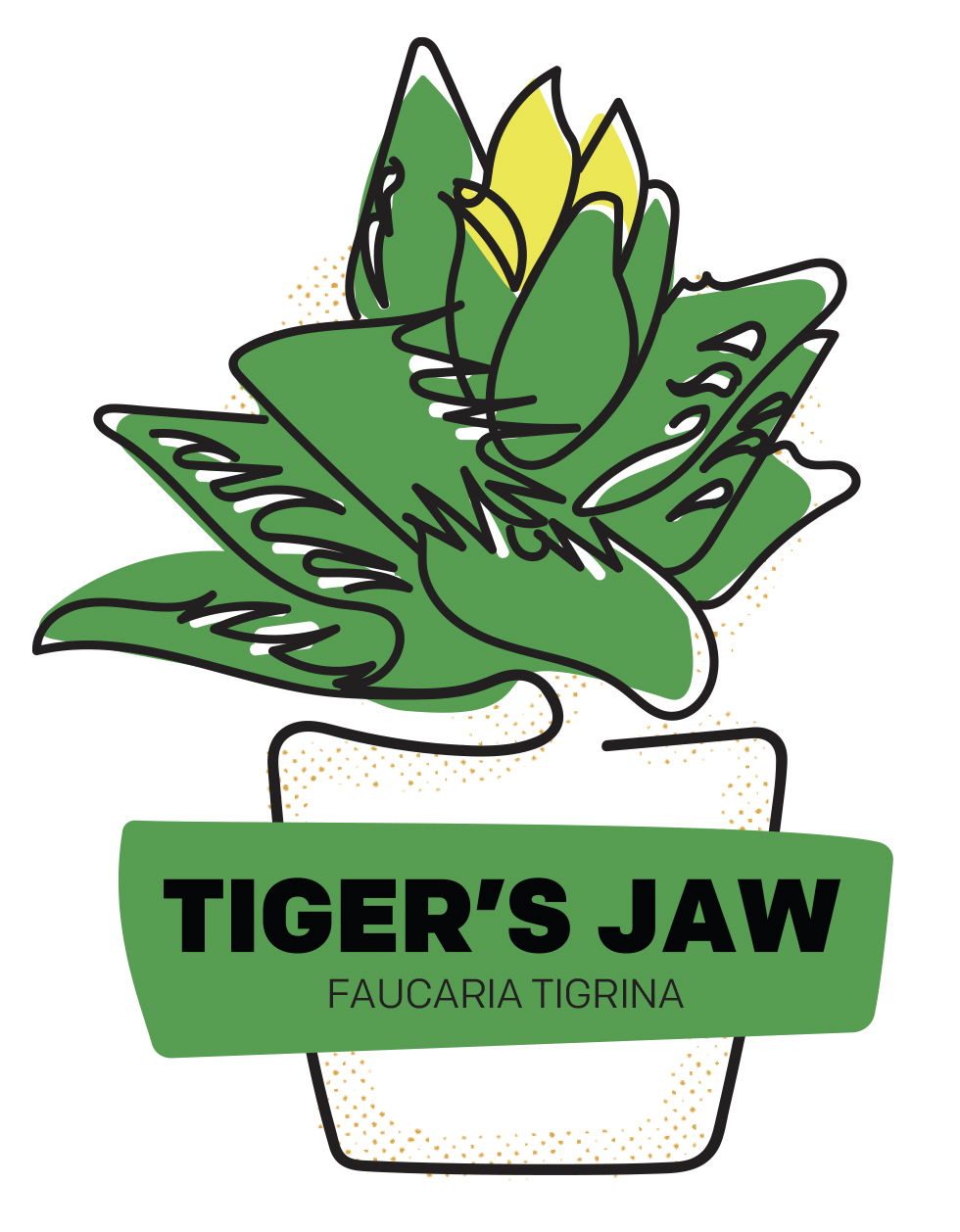 Tiger's Jaw