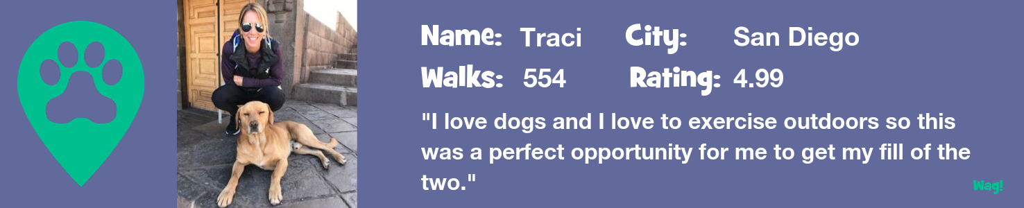 Vetted dog walker, Traci's profile page says she provides 5 stars dog walking service on the Wag! Walker app