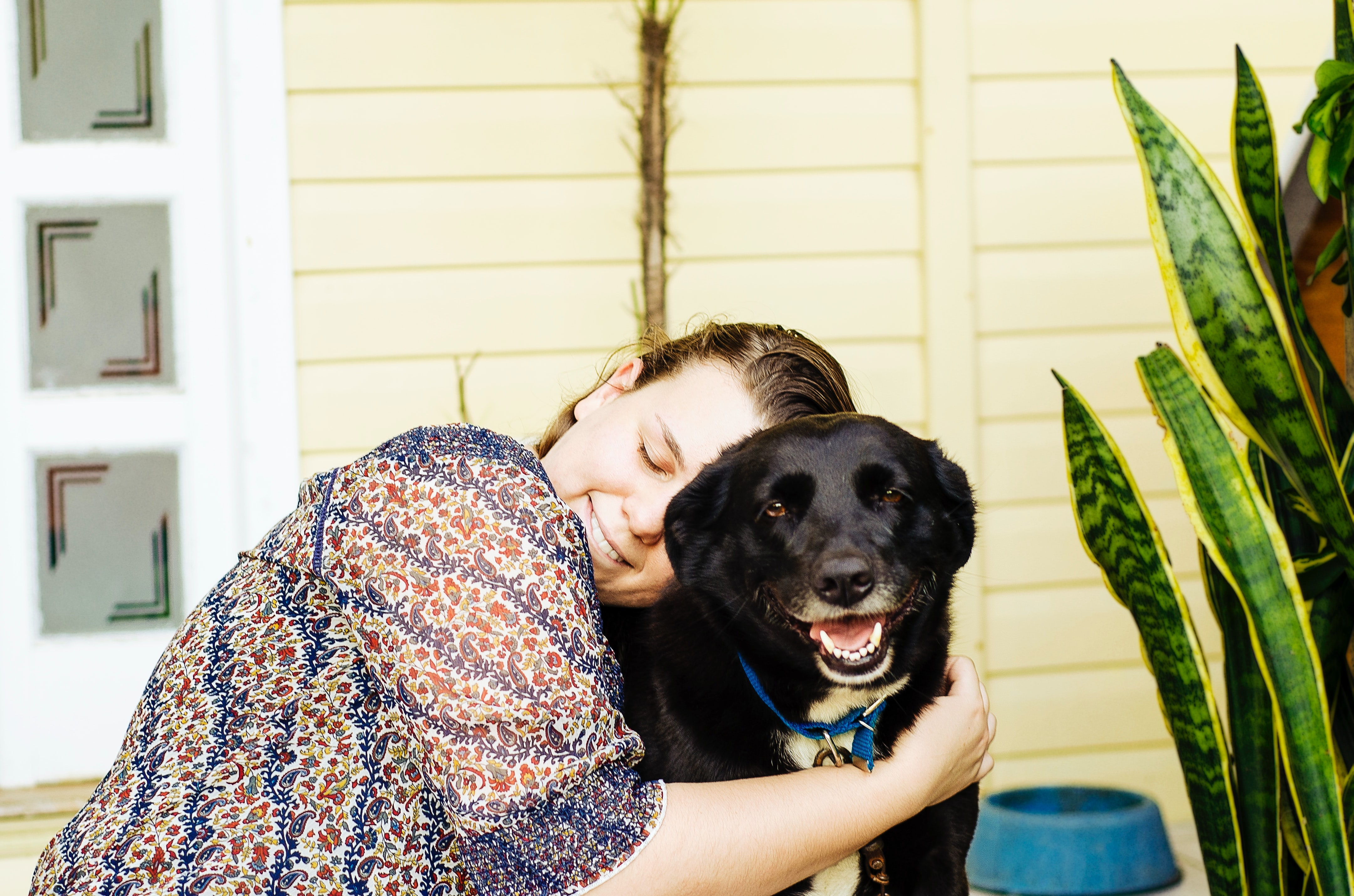 Plan a visit with a dog-less friend or older person who may love a visit from a furry friend!