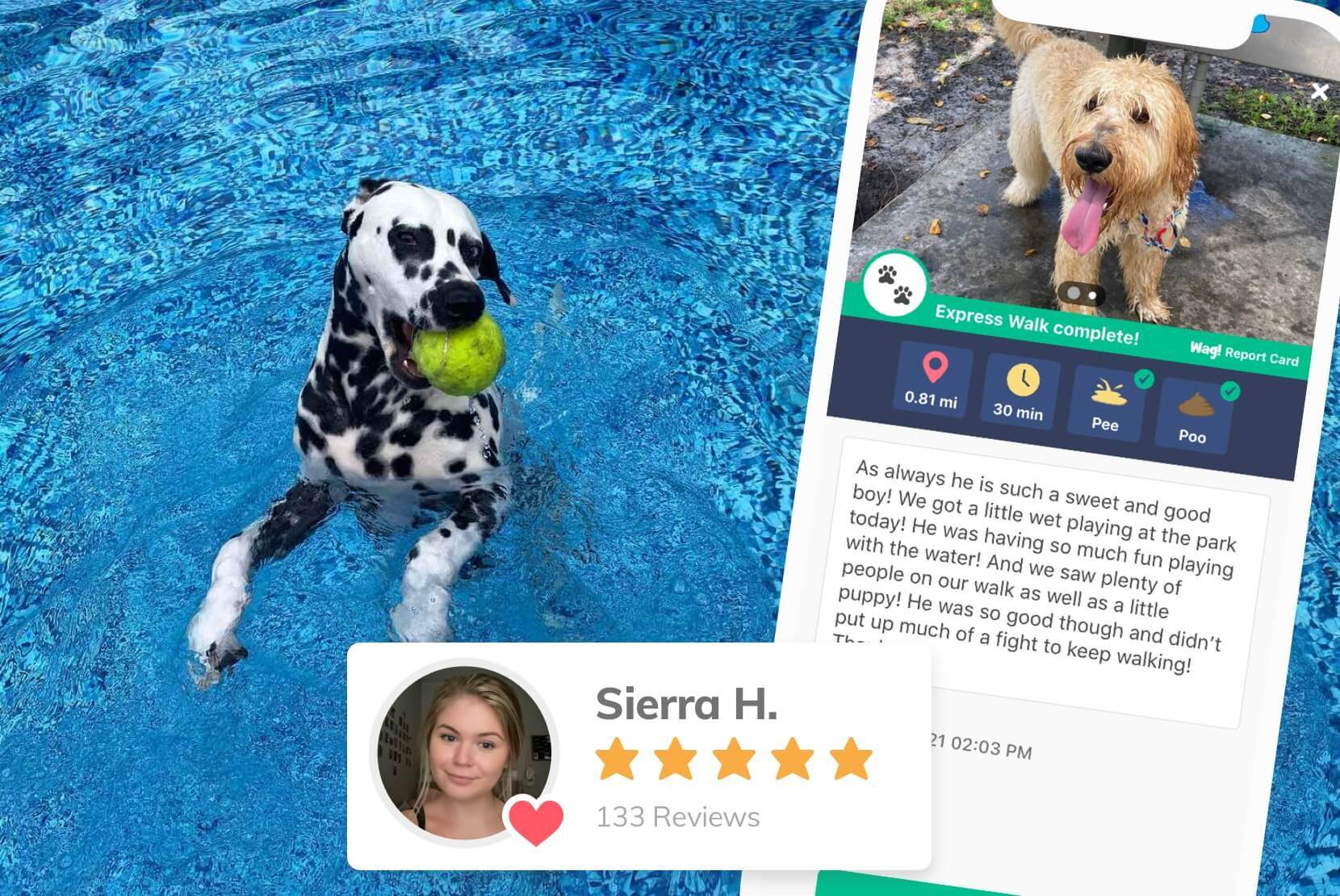 Dog Walker Sierra is known by her clients to go the extra mile to love & care for her doggie clients like Woogs, Mungo, Jabba, and more. She walks dogs in her free time as a college student in Austin.