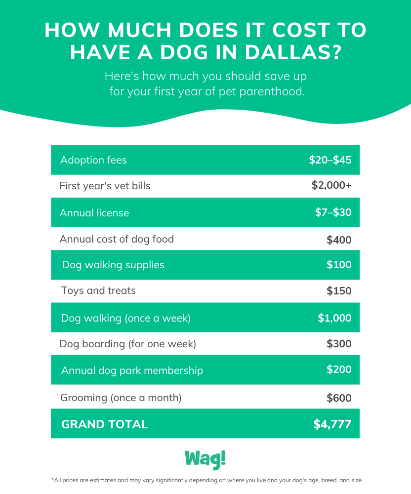 how expensive is it to own a dog in dallas infographic - green, white and gray text