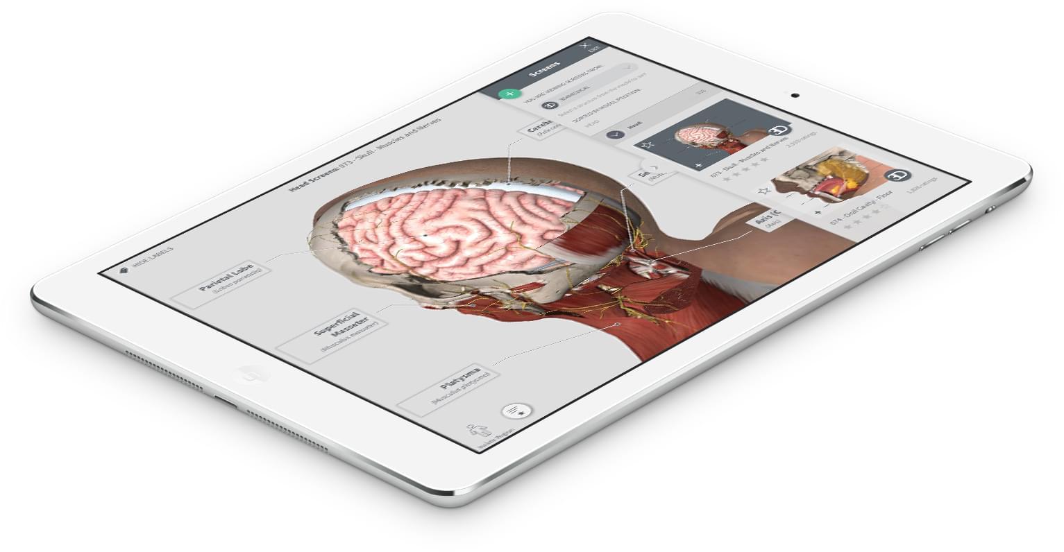Complete Anatomy on iPad