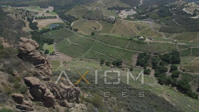 Flying by hilly vineyards in Malibu, California Aerial Stock Footage | AX42_105