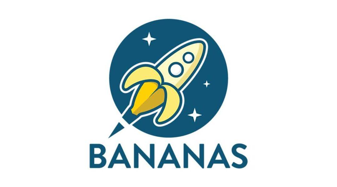 BANANAS Universidad: Finanzas Empresariales
