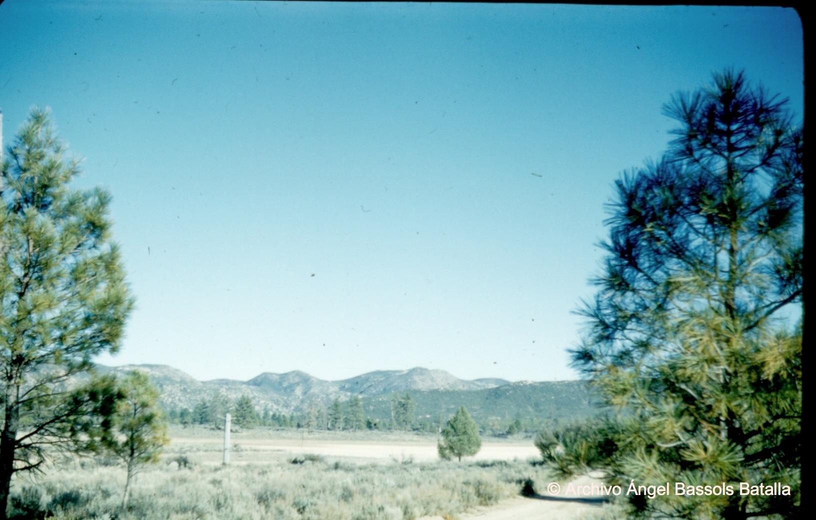 En Sierra Juárez