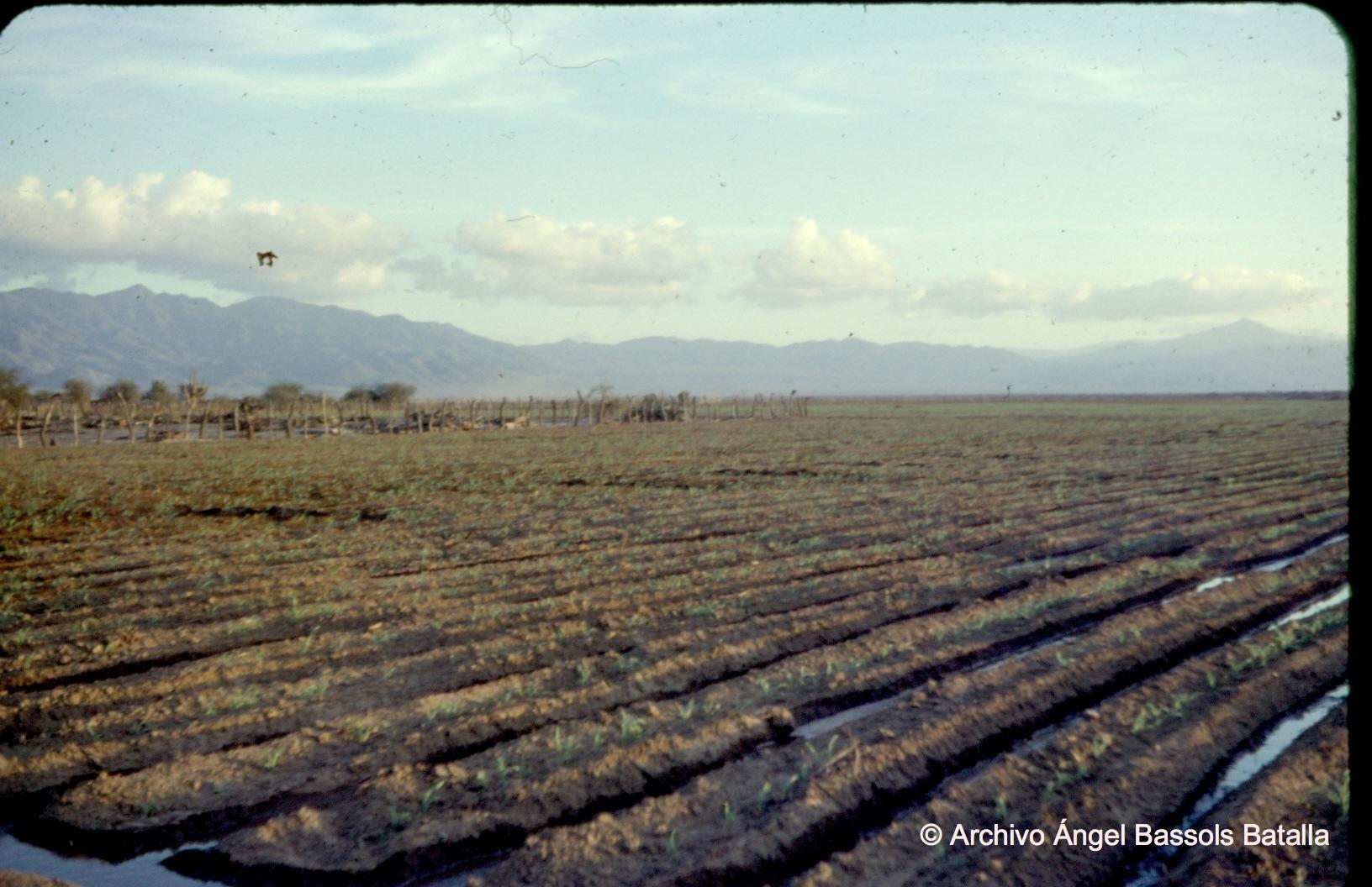 Zona Agrícola Los Planes en La Paz 2