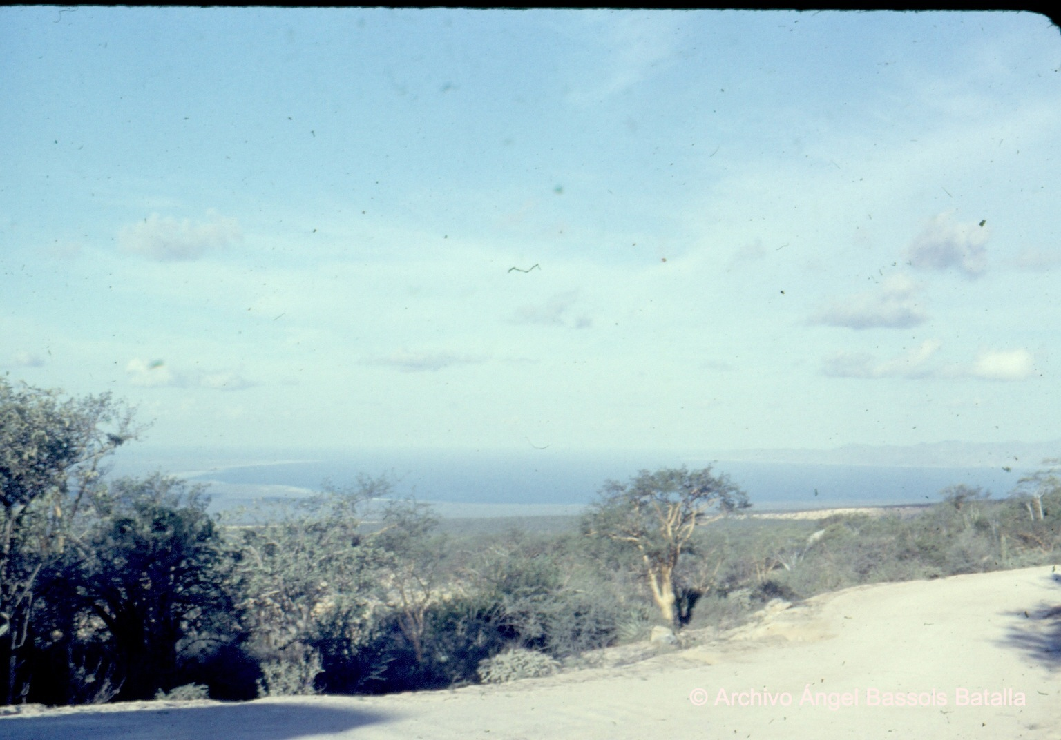 Montañas Cacachilas