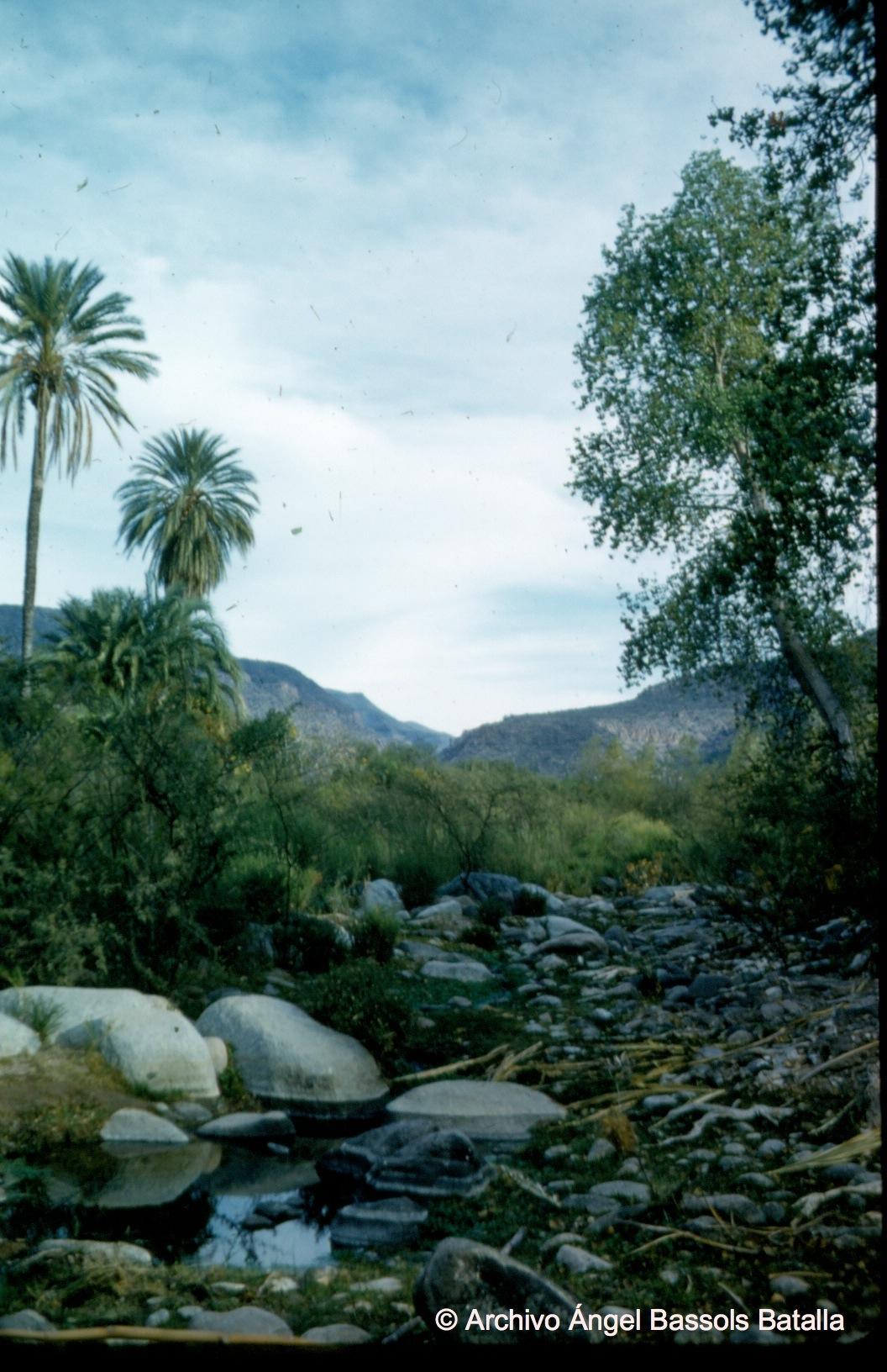 Cañada junto al Motomi