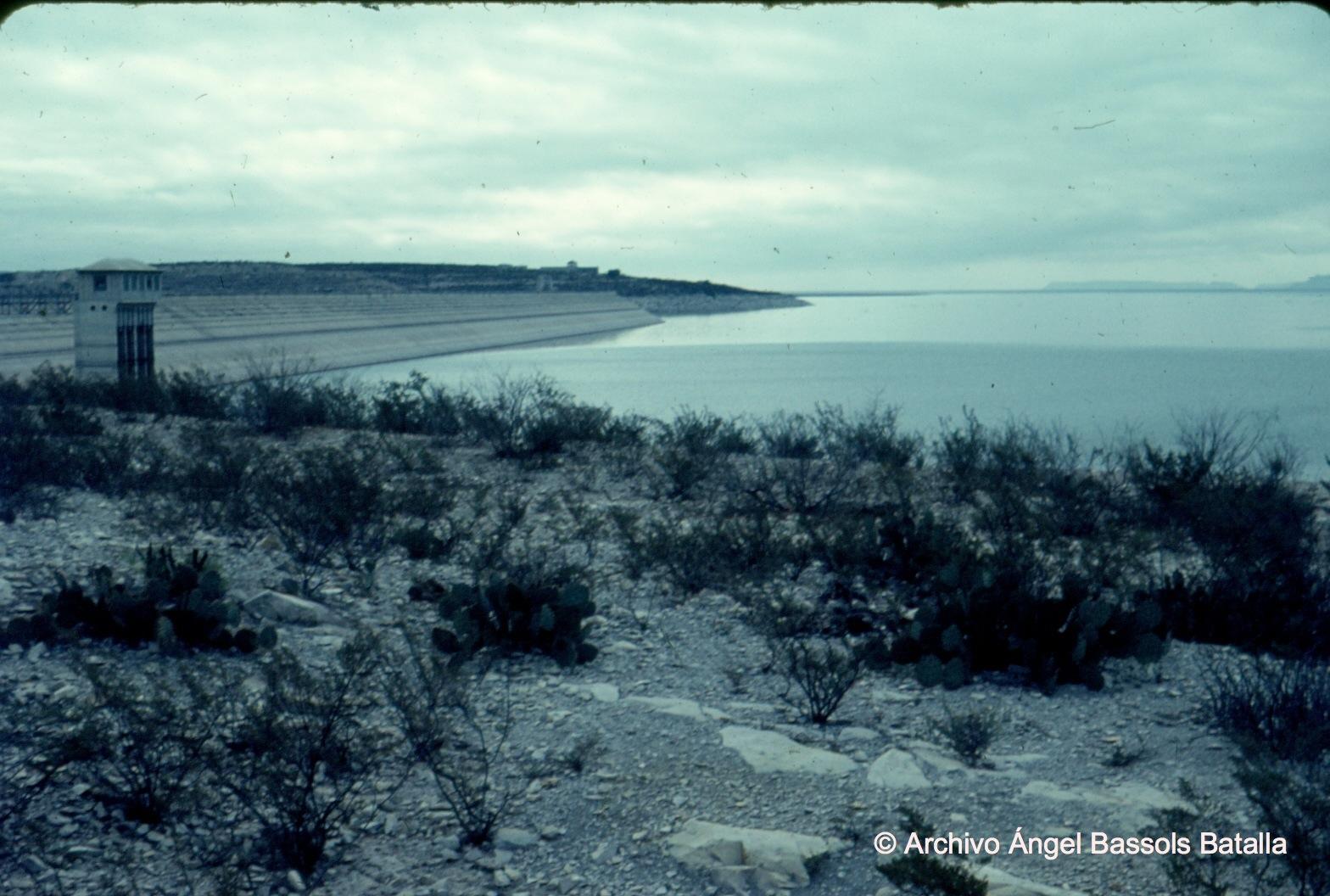 Vegetación en cercanías de presa Falcón