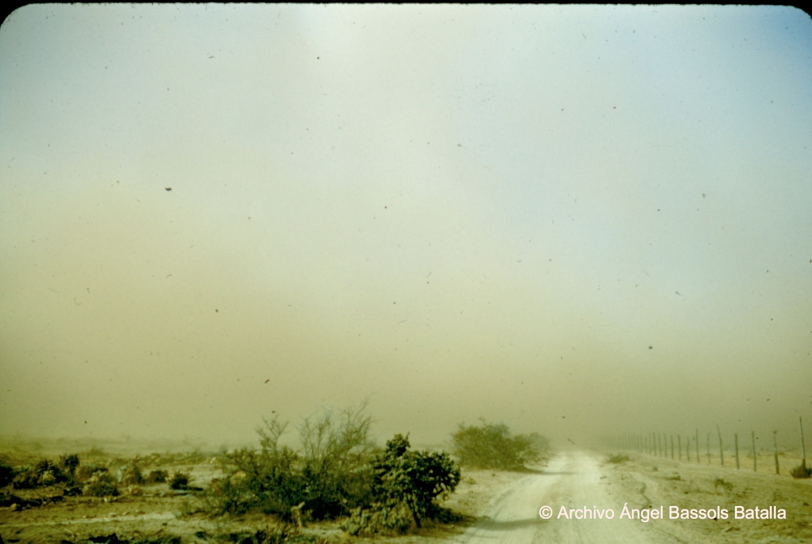 Nube de polvo en Valle de San Telmo San Pedro Mártir