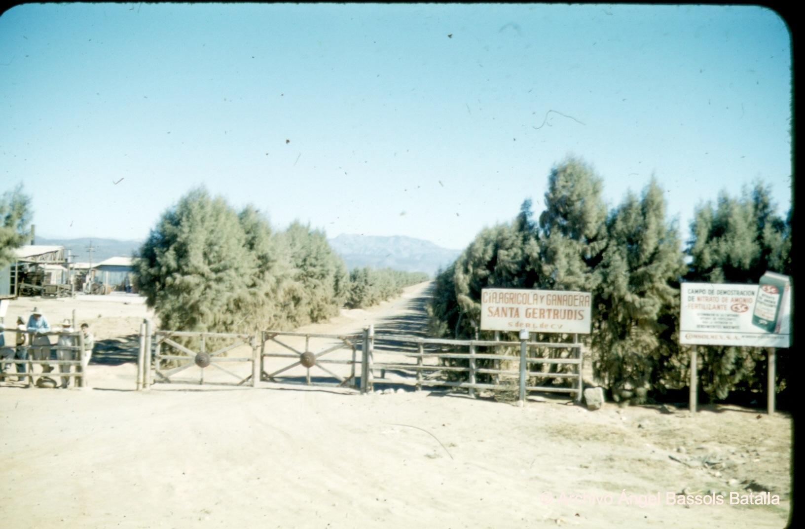Santa Gertrudis en Villa Guerrero
