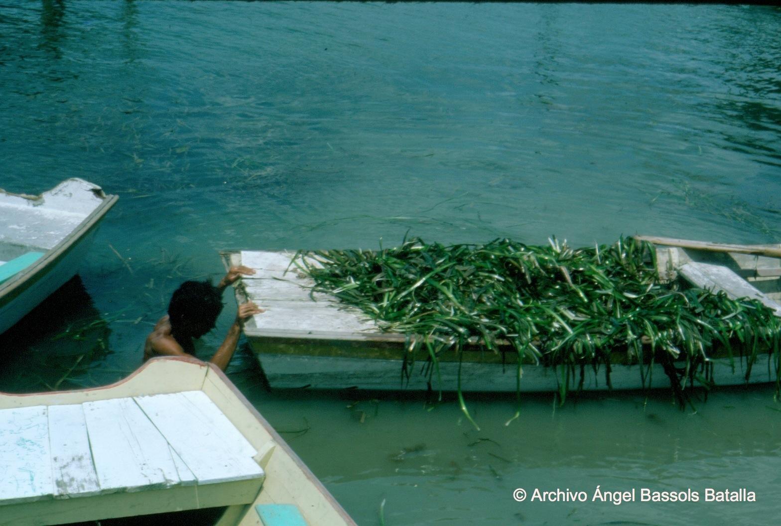 Laguna Chairel