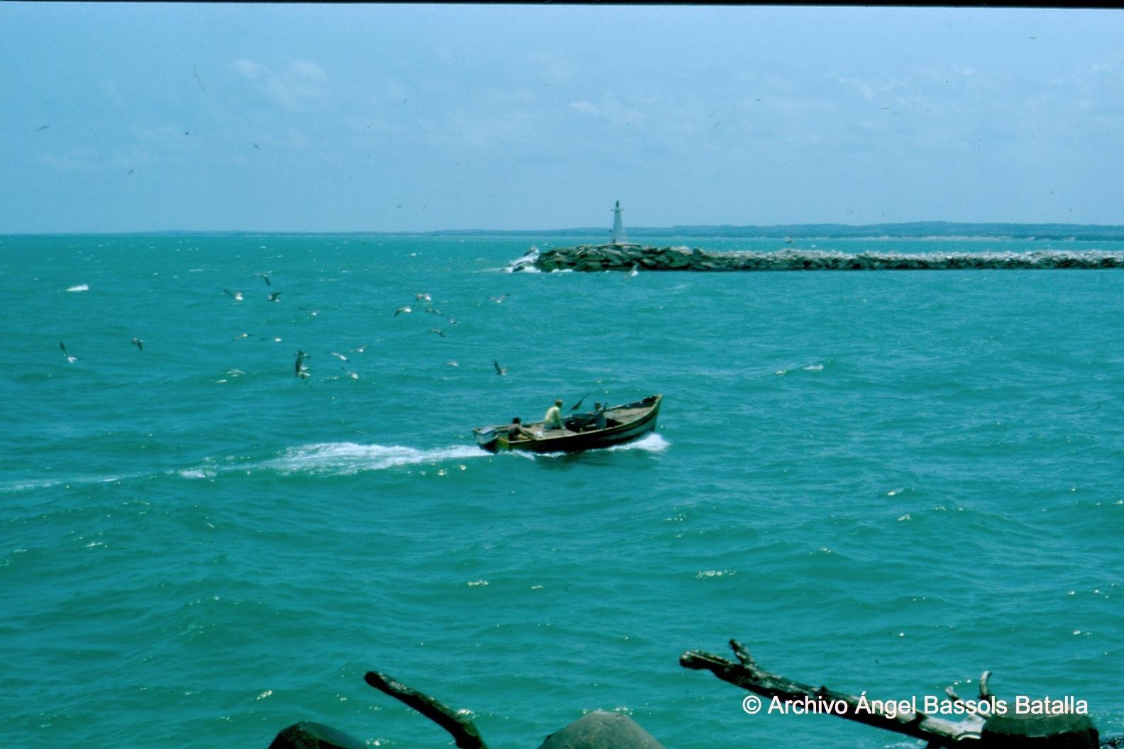 Laguna de Tampico 2