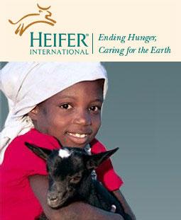 heifer_project_photo