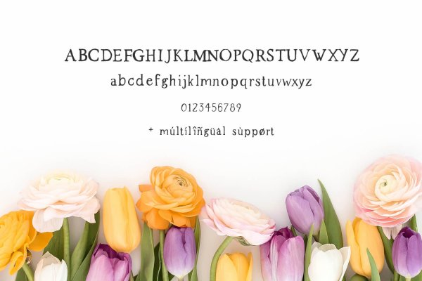 characters Spring Market Rustic Farmhouse Serif