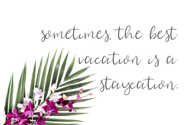 quote Staycation Script Font