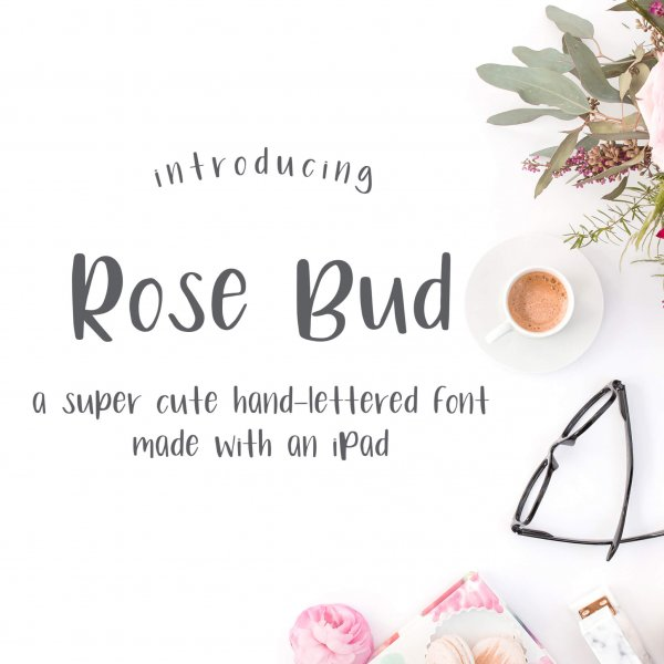 Rose Bud Whimsical Sans Font hand lettered