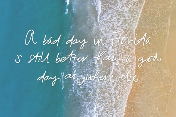 day quote Florida Girl Script & Sans Duo