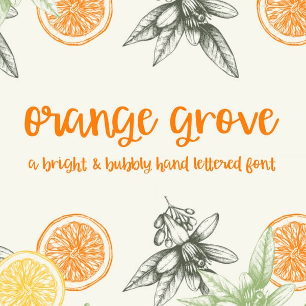 Orange Grove Script