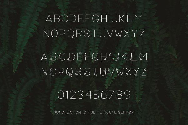 characters for Lush Typeface