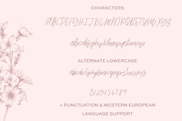 character map Whiskey Girl Signature Script Font