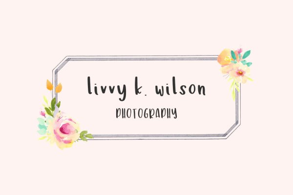 photography logo Lilykins