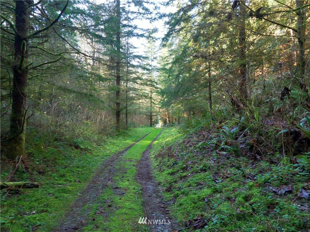 Details for 0 Frankwaters Road, Stanwood, WA 98292