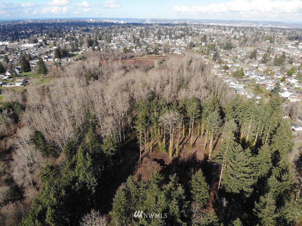 Details for 7602 D St Street, Tacoma, WA 98404
