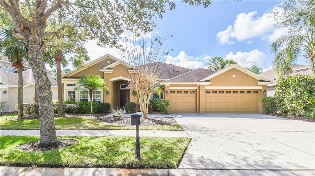 Details for 16114 Brecon Palms Place, TAMPA, FL 33647