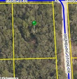Listing Details for Crumbling Stone Drive, WEBSTER, FL 33597
