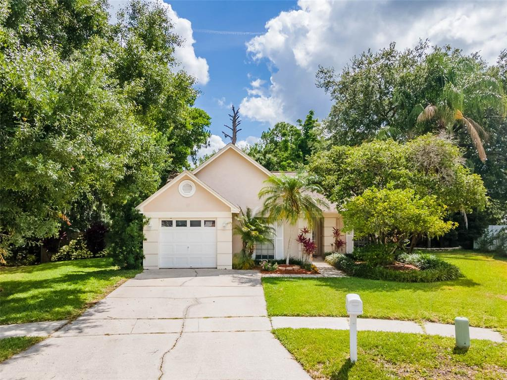 Details for 4504 Cabbage Palm Drive, VALRICO, FL 33596