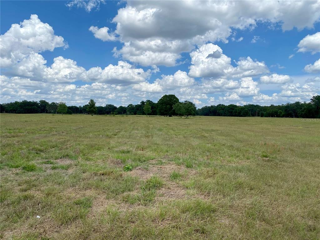 Details for Tract B Cr 738, WEBSTER, FL 33597