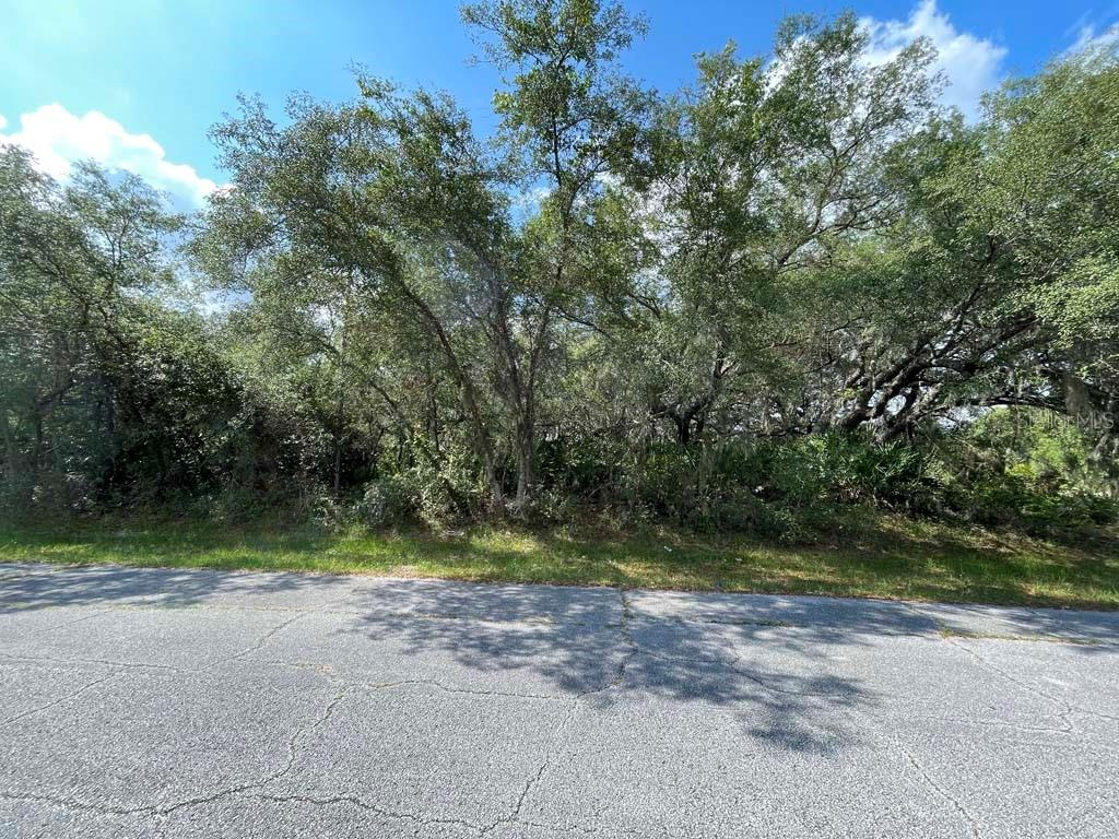 Details for 1577 Marlin Drive, POINCIANA, FL 34759