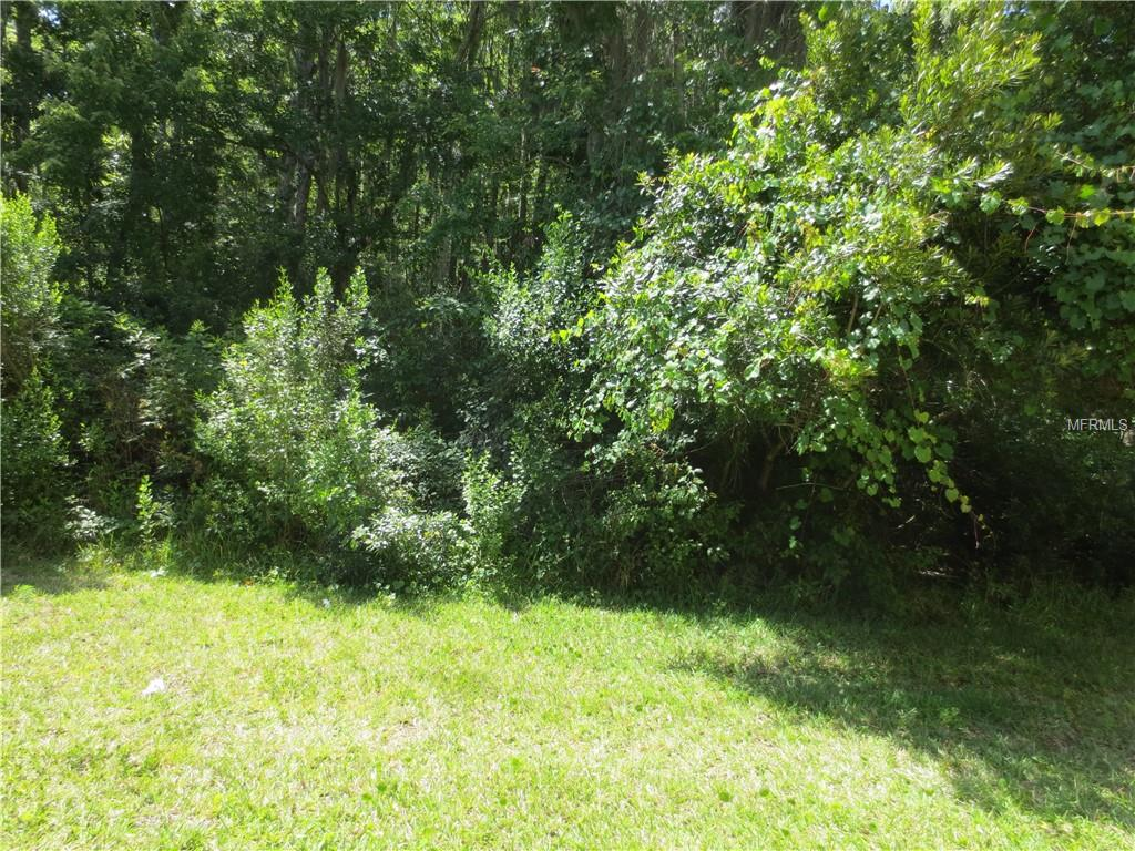 Listing Details for 21 Snapdragons Court, HOMOSASSA, FL 34446