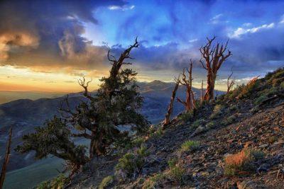 Classic Sierra Storm from Shulman Grove