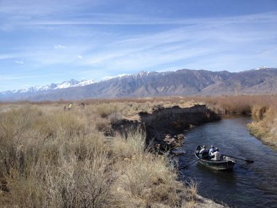 Owens River Meander